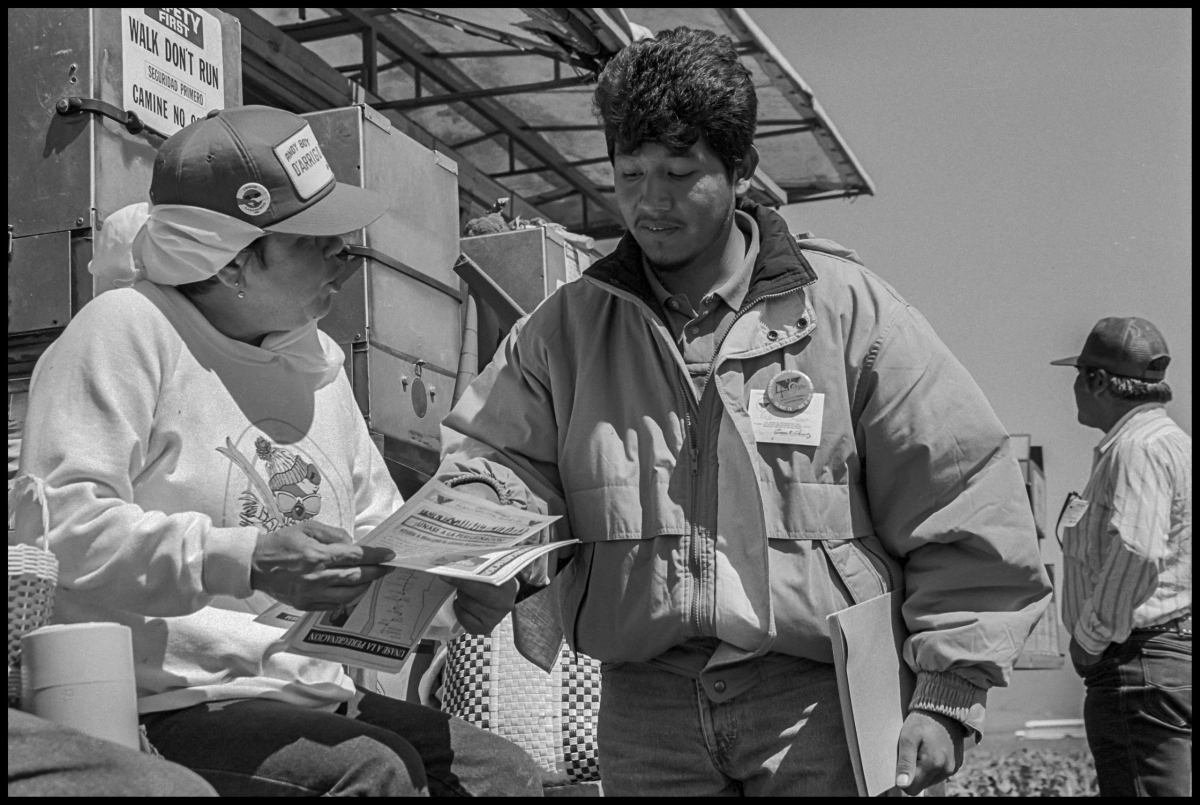 An organizer talks at lunchtime with a D'Arrigo Brothers worker with a union button on her cap.